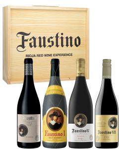 Faustino Rioja Red Wine Experience Box
